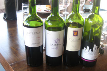 Wine Tasting in Chile and Argentina