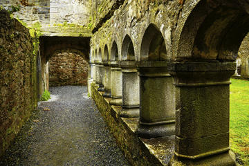 Ross Errilly Friary (Ross Abbey), Galway