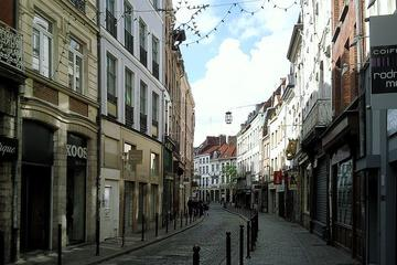 Lille Old Town (Vieux Lille)