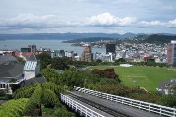 Mount Victoria Lookout, Wellington