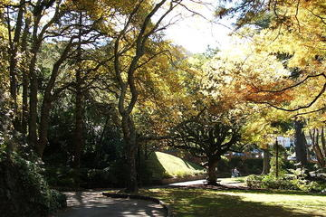 Wellington Botanic Garden, Wellington