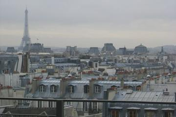 Paris from high above