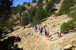 Top Cyprus Walking Trip (Troodos - Artemis trail and opt Caledonia Waterfalls)