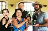 Full-day Casablanca Valley Sparkling Wine Tasting Tour from Santiago