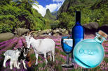 Private Iao Valley, Ocean Vodka Distillery & Lavender Farm with lunch