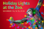 Holiday Lights at the Chattanooga Zoo