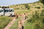 07 Days Best Of Kenya Camping Adventure Tour 2018-19