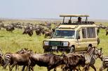 13 Days Kenya and Tanzania Economic Safari Camps and Budget Hotels