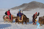 2-Day Guided Mongol Nomadic Show Tour with Transport