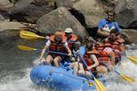 Lower Animas Family Rafting