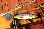 Brown trout fly fishing day tour in lough corrib county galway in galway 410046
