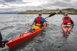 Connemara Sea Kayaking Adventure along the Wild Atlantic Way