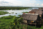 3 day amazon jungle adventure from iquitos in iquitos 288834