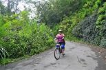 Bicycle Tour of Jamaica's Blue Mountains from Falmouth