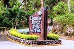 Dunn's River Falls and Ocho Rios Shopping Tour from Falmouth