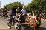 Aswan city tour by horse carriage in aswan 321218