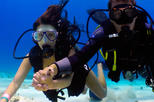 Half-Day Combo Tour with Intro to Scuba and Cozumel Tourwith Lunch