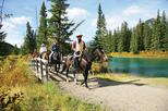 1 Hour Banff Horseback Riding Adventures