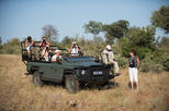 9-Day Privately Guided Best of Kruger Park Safari