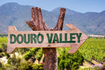 Douro valley Tour - Full Day All Inclued