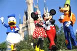 Exclusive luxury day trip to Orlando from Sarasota