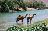 East Jewels with Wadi Darbat :Salalah tours