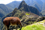 4 Day Machu Picchu Special  ( Group Service )