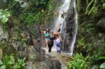 Caribbean - Puerto Rico: Small-Group El Yunque Rainforest Day Trip from San Juan