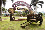Appleton Estate Rum Tour and Tasting from Montego Bay