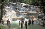 Dunn's River Falls and Fern Gully Highlight Adventure Tour from Ocho Rios