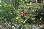 Falls Flyer Zipline and Dunn's River Falls Adventure Tour from Negril