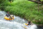 Jungle River Tubing Adventure from Ocho Rios