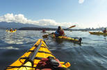 2.5-Hour Guided Nature Kayak Tour in Vancouver