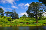 Full day hobbiton and rotorua tour from auckland in auckland 220569