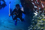 Dive package Caribs from Playa del Carmen