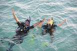 2 Dives Packages with Transfers in Tenerife