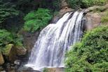 Private Day Tour: The Midland Waterfall Hunt from Kandy
