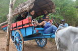 Private Village Tour Including Traditional Sri Lankan Lunch from Negombo