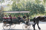 Horse & Carriage and Haunted City Walking Tour Combo