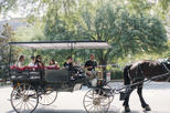 Savannah Horse & Carriage and History and Architecture Walking Tour Combo