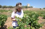 Athens Wine Tasting Tour in a Greek Winery