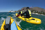 Paddling Your Sea Kayak with Penguins In Cape Town