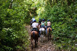 Horseback Riding in Tamarindo