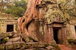Angkor: Where Nature Meets History