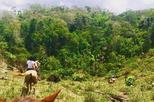 Horseback Ride to the Forgotten Jungle City