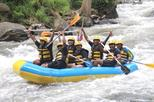 AYUNG RIVER RAFTING AND UBUD SWING