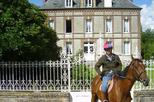 Private Tour: Normandy Thoroughbred Horse Studs Tour from Caen with Optional Horseback Riding