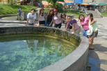 Hot Spring and Templers Park Waterfall Tour from Kuala Lumpur