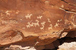 Guided Jeep Tour of Moab Area Petroglyph Sites