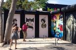 Self-Guided Tour of Wynwood Walls